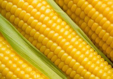 Export Frozen Sweet Corn